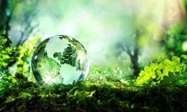 «Make the switch»: la scelta di Epson per l'ambiente e l'efficienza