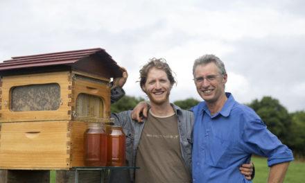 Dell, le api e il futuro