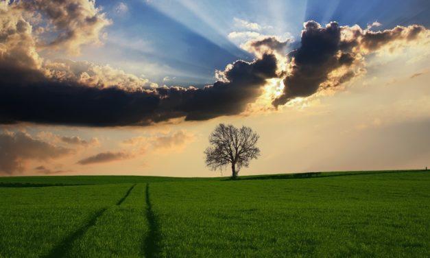 Epson e l'ambiente: una visione a lungo termine